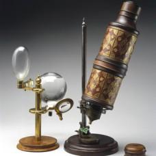 microscope de Hooke (x30)