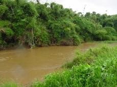 rivière chargée d'alluvions fines